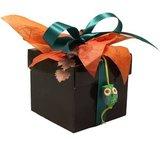 CubeBox® 125g Bruin 5C_